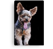 Call Ripley's Believe It Or Not! Canvas Print