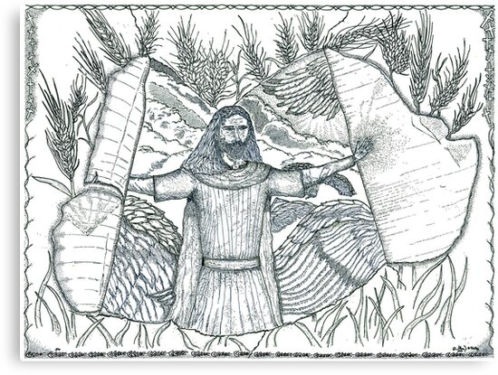 Final Harvest by Glenn McCarthy