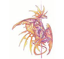 poledance dragon Photographic Print