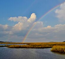 Rainbow Over The Salt Marsh At The State Park by Kathy Baccari