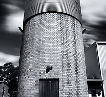 Water Tower by vilaro Images
