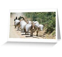 donkey power Greeting Card