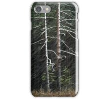 20.11.2015: Pine Trees and Blizzard iPhone Case/Skin