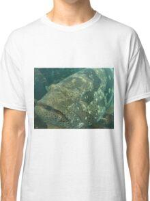 Mr Baramundi Cod Classic T-Shirt