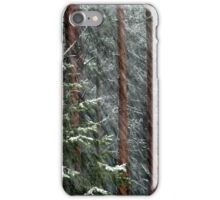 20.11.2015: Blizzard in the Forest iPhone Case/Skin
