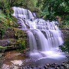 Liffy Falls - Tasmania by Stephen  Nicholson