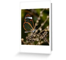 More Glass........ Greeting Card