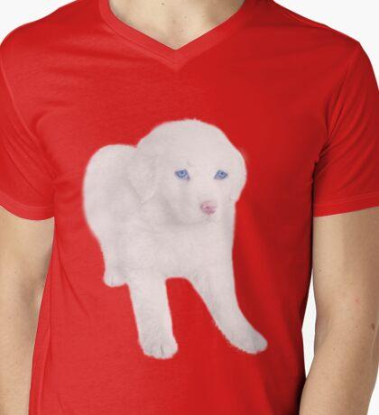 Ƹ̴Ӂ̴Ʒ SWEET DOG TEE SHIRT Ƹ̴Ӂ̴Ʒ Mens V-Neck T-Shirt