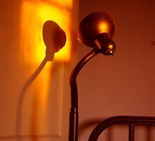 snakelamp sunset by dedmanshootn