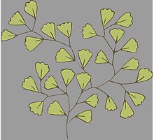 Leaf Go Green Ecology Photographic Print