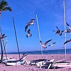 Seagulls on the beach  by 1EddiejrAlvarez