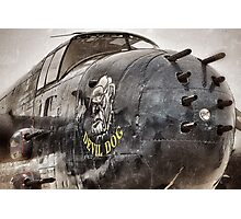 Devil Dog Photographic Print