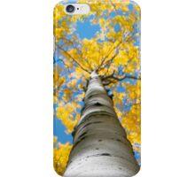 aspen in the fall iPhone Case/Skin