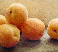 Apricots by Simone Riley