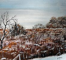 Cattail Marsh by Jack G Brauer
