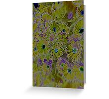 JWFrench Collection Flower 5 Greeting Card