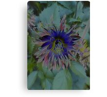 JWFrench Collection Flower 6 Canvas Print