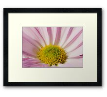 Pink and Yellow Framed Print