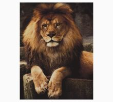 Heart of a lion Kids Clothes