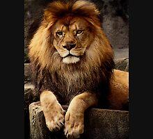 Heart of a lion Unisex T-Shirt
