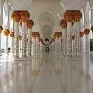Sheikh Zayed Mosque by dgscotland
