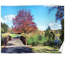 Fall at the Wetlands Poster