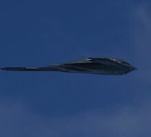 B-2 Bomber in Flight by fototaker