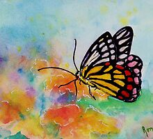 Song of Joy - Butterfly by Robin Monroe