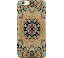 Rainbow Carpet 2 iPhone Case/Skin