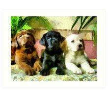Labrador Retriever Pups Trio Art Print