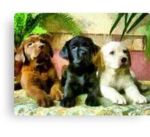 Labrador Retriever Pups Trio Canvas Print