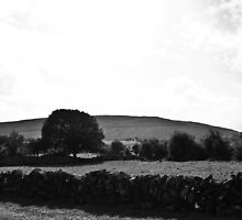 Ireland in Mono: Dreams Are So Real by Denise Abé