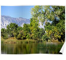 Pretty Day In The Sierras Poster