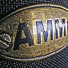 Ammo Horse Saddle Close Up  by Russell Voigt