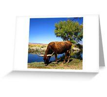 Riverside Munchies Greeting Card