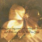 Wishing You A Very Warm Christmas by Vickie Emms