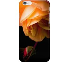 The Mystery iPhone Case/Skin