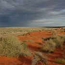 Late afternoon in the Simpson Desert by Adam Branford