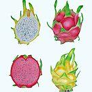 Dragon Fruit by joeyartist