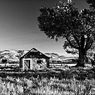 Nevada Countryside by Kurt Golgart