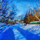 Canadian Winter by DiNovici