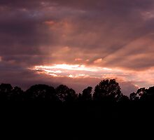 Rays of Sunset by CWhatIC