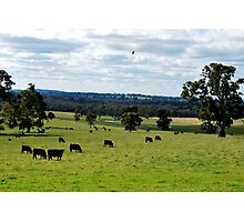 Rural Landscape Photographic Print