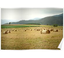 Tableland Farmland Poster