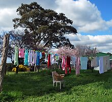 Laundry Day on the Farm by Lozzar Landscape
