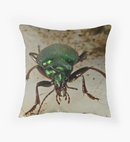 Beetle Stare down Throw Pillow