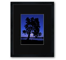 Watching the supermoon rise Framed Print