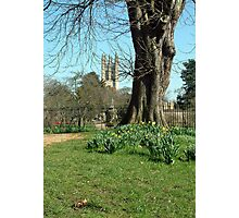 Magdalen College Tower Photographic Print