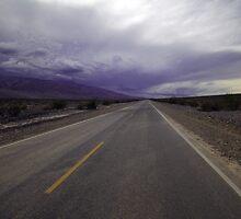 Desert Storm by Natalie Ord