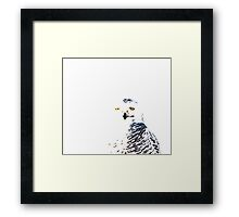 Snowy Owl on White Framed Print